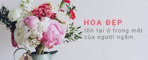 Hoa-tuoi-quan-3